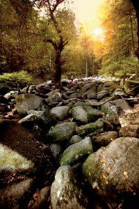curso alemania höchst im odenwald